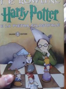 Harry Potter e la Pietra Filosofale - Lande Incantate