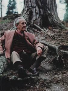 J.R.R. Tolkien  - Libri a 360° - Lande Incantate