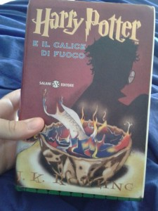 Harry Potter e Il Calice di Fuoco - Lande Incantate
