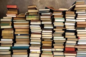 Pila di Libri - Lande Incantate