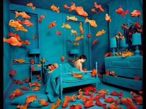 Sandy Skoglund, Revenge of the goldfish - Lande Incantate