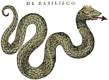 historiae animalium, Basilisco - Lande Incantate