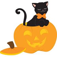 Zudda si Halloween - Lande Incantate